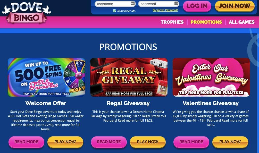 dove bingo promotions